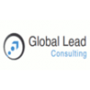Global Lead IT Recruitment