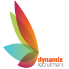 Interviewing Dynamix Recruitment Solutions