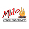 Mlilo Consulting Services
