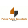 Puleng Pulane Consultants