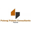 Puleng Pulane Consultants (Pty) Ltd
