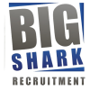 Big Shark recruitment