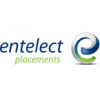 Entelect Placements